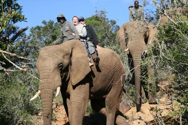 2011 Republik Südafrika