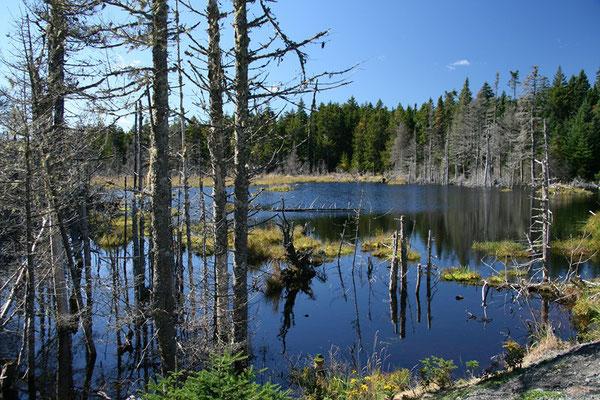 New Brunswick, Kanada: Fundy NP