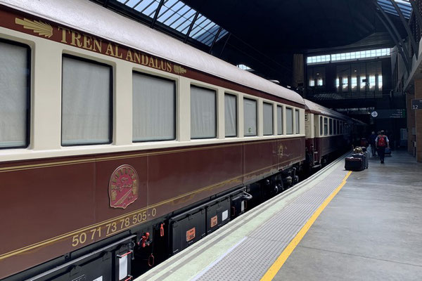 der Zug im Bahnhof von Sevilla