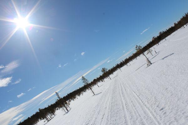 Auf Langlaufskieren durch die endlosen Weiten Lapplands