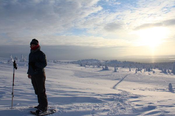 Auf Schneeschuhen durch die wunderbare Landschaft Lapplands