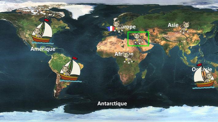 ecoles : cycle 3, expansion des chats dans le monde