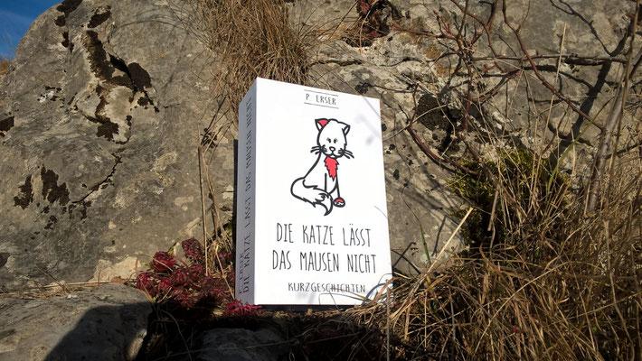 Buch-Tresor-Katze-Papeterie.jpg