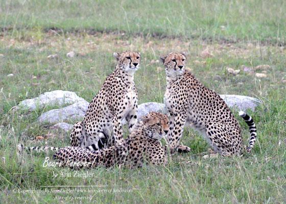 Family Portrait - Kenya, Africa