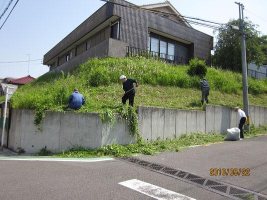 公会堂法面草刈1