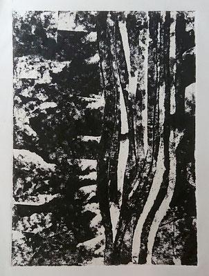 Algues2 - Gravure sur carton 50x40 cm 2018