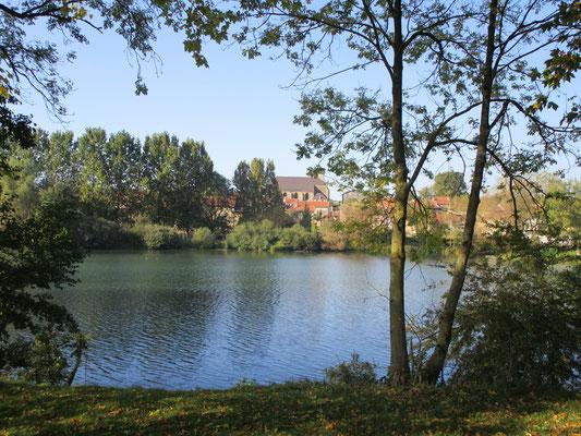 La Meuse serpente à Pouilly-sur-Meuse