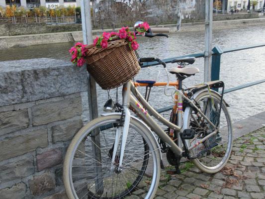 Le vélo bucolique en toute liberté...