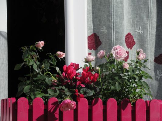 Ouvrez la fenêtre et laissez entrer le soleil !