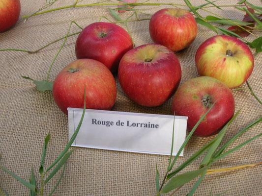 Un pays de pommes...des pommes de pays...