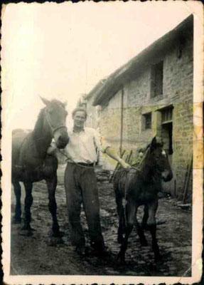 Avant l'arrivée des tracteurs, les chevaux avaient pour nom Princesse, Caline... ; le jeune homme, c'est mon papa !