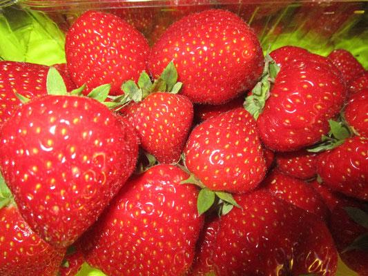 Les jardins maraîchers des alentours proposent en saison de délicieuses fraises goûteuses