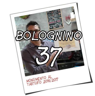 bolognino 37