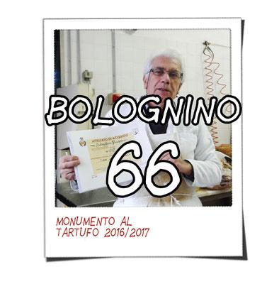 bolognino 66