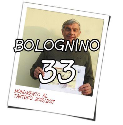 bolognino 33