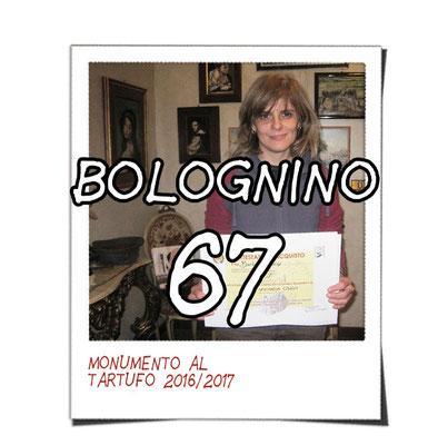 bolognino 67