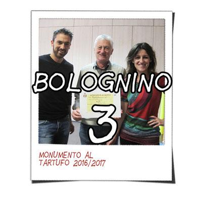 bolognino 3 - Tipolitotecnica