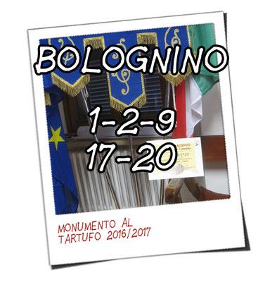 bolognino 1, 2, 9, 17 e 20 - Amm. Com.le