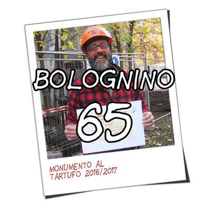 bolognino 65