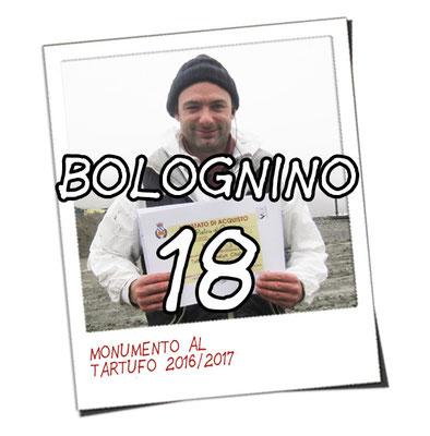 bolognino 18 - La Pietra di Cassio