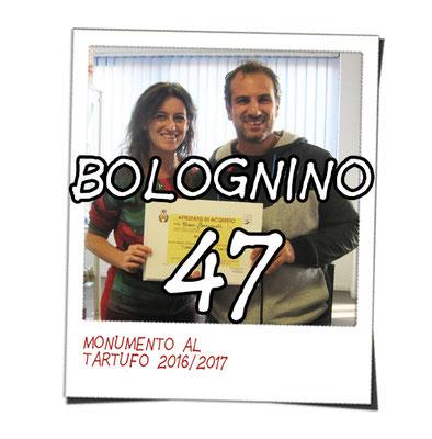 bolognino 47