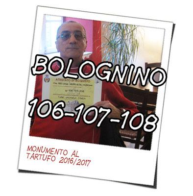 bolognino 106, 107 108   il SECCO
