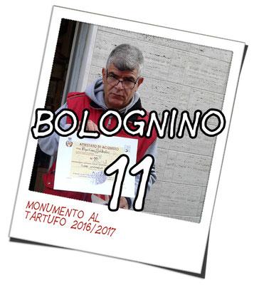 bolognino 11   - Pino Ciro S.