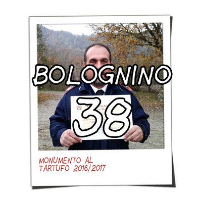 bolognino 38