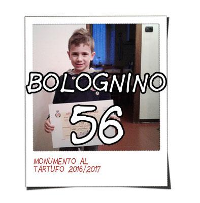 bolognino 56