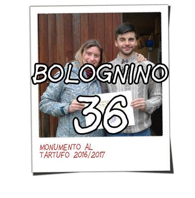 bolognino 36