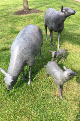Bronze sheep real size