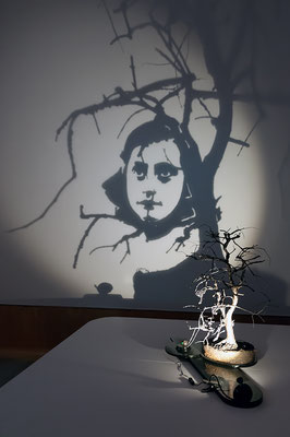 Growing Icon. Shadow sculpture.