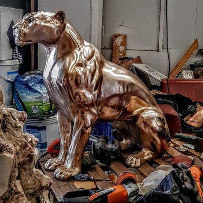 Chris Tap, Jaguar, Bronze