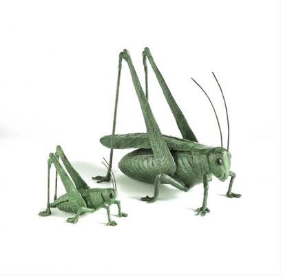 Willemien Fransen Brons / Bronze Sprinkhaan / Grasshopper 40 x 32 cm