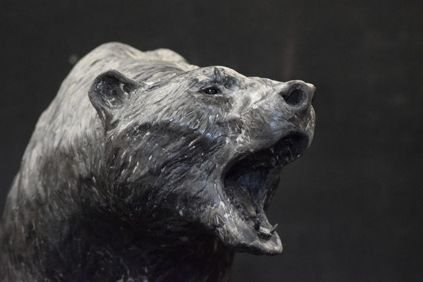 Baer Head, 40 cm, marble composite EUR 2,500