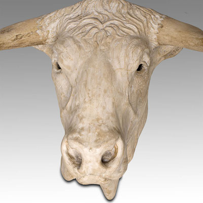 Bull Head 80 cm. Price on request