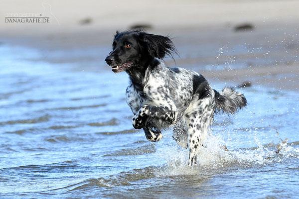 Begeisterung auch im Wasser