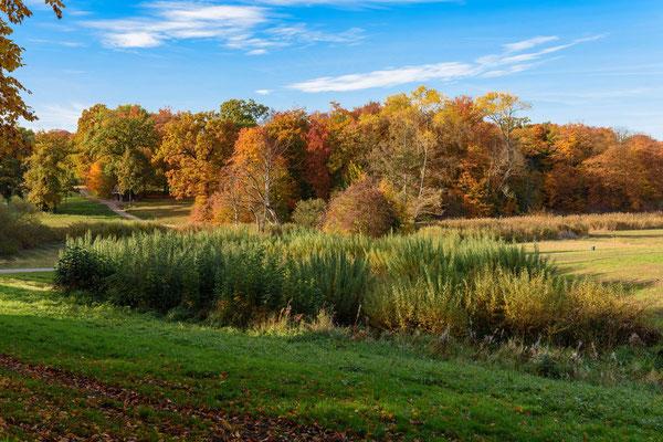 Herbst im Jenischpark