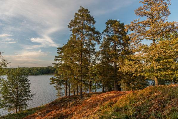 Am Helgasee, Småland