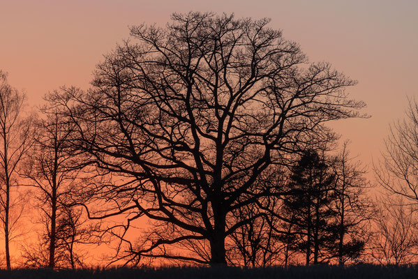 Sonnenuntergang am Helgasee