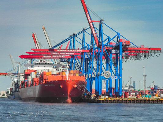 Containerterminal Buchhardkai Hamburg