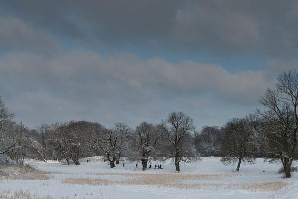 Winter im Jenischpark Hamburg