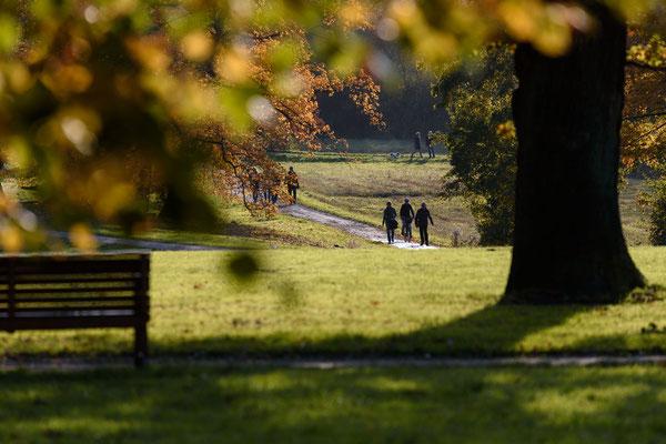 Spaziergang im Jenischpark
