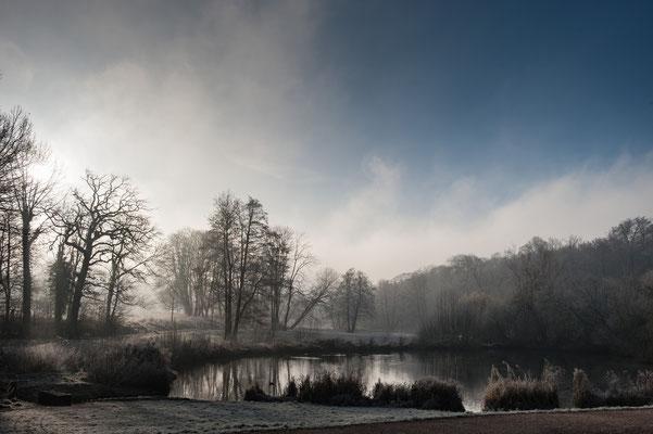 Morgennebel im Jenischpark Hamburg