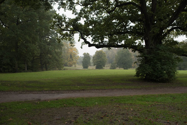 Der Volkspark in Hamburg