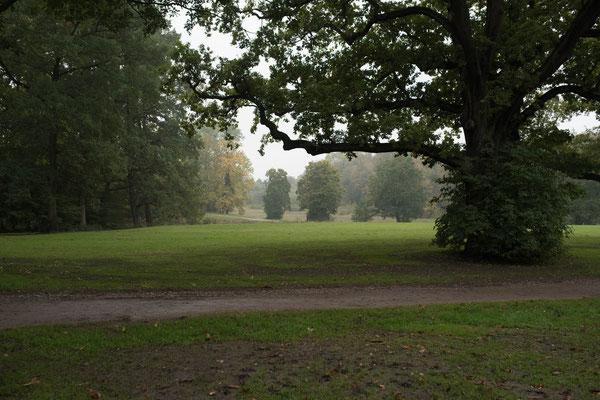 Der Volkspark in Hamburg