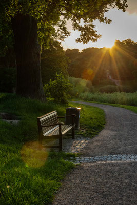 Sonnenuntergang im Jenischpark