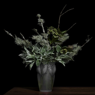 "T.M. Glass, ""Lambs Ear and Lichens on Pine Branches in a Lalique Glass Vase,"" 2020, archival pigment print on hand-made Italian rag paper, Available in: 42 x 42""; 52 x 52""; 58 x 58"", contact for price"