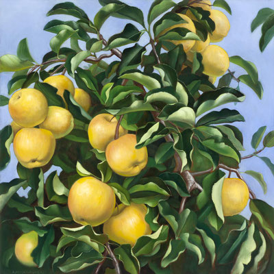 "Denise Mickilowski, ""Golden Orchard Apples,"" 2017, oil on panel, 30 x 30 inches, $14,000"