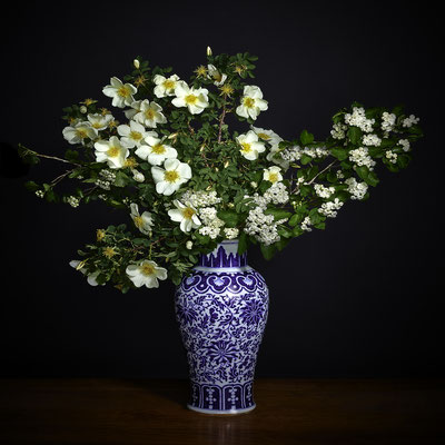 """T.M. Glass, """"White Hawthorne and White Shrub Rose in Blue and White Chinese Vessel,"""" 2020, Archival Pigment Print, 42 x 42 inches (also available in 30 x 30""""; 52 x 52"""", 58 x 58""""), contact for price"""